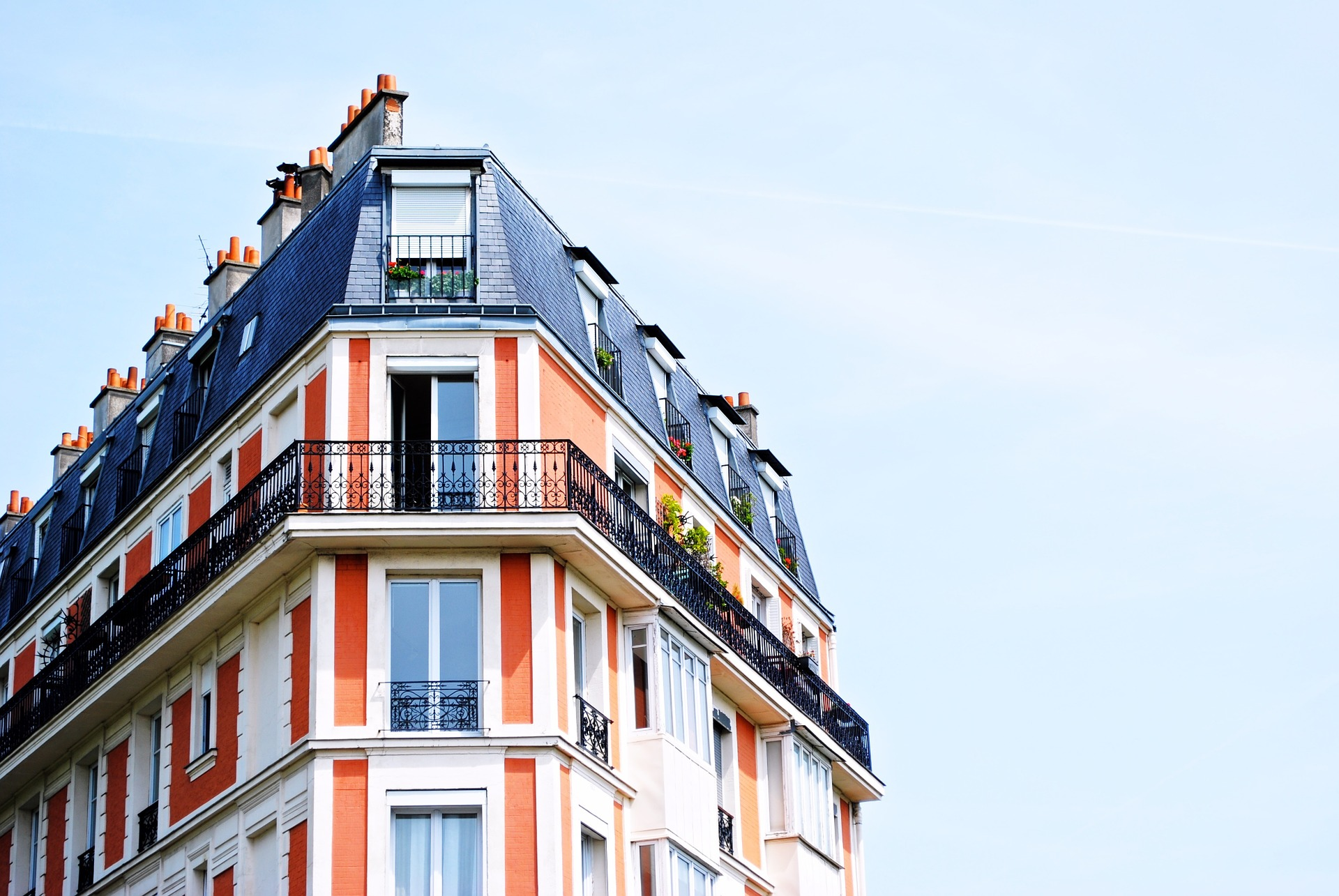 appartement infesté de cafards